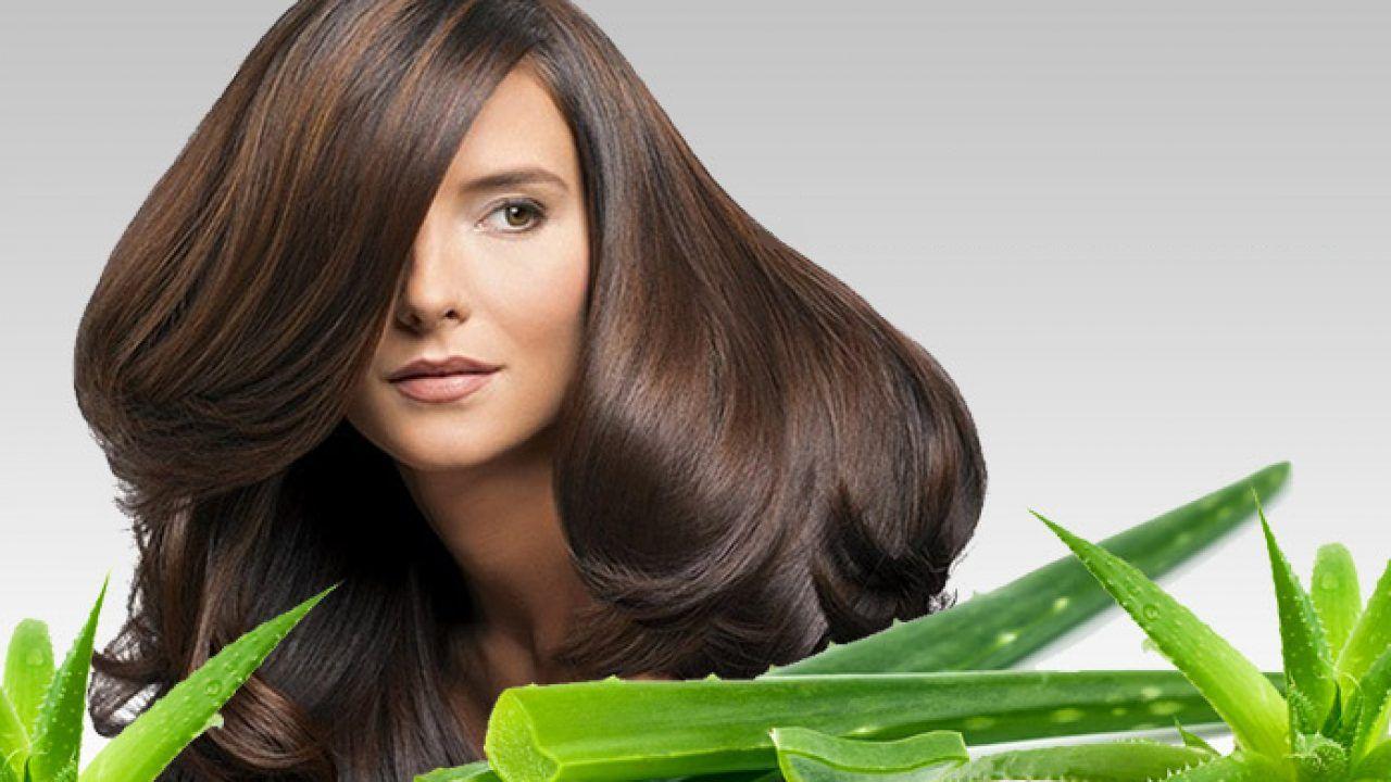 Aloe Vera per la cura e caduta dei capelli