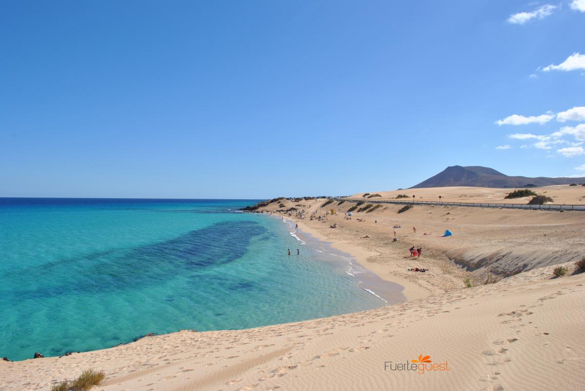 Le Isole Canarie consentono l'ingresso di viaggiatori stranieri con test antigeni
