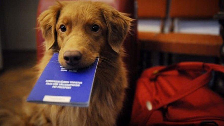 Il passaporto sanitario Europeo, obbligatorio per le Canarie